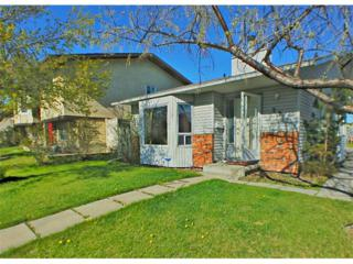 36  Whitehaven Road NE , Calgary, AB T1Y 5A4 (#C4013800) :: The Cliff Stevenson Group