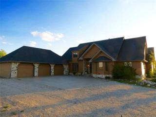 41127  Twp Rd 283  , Rural Rockyview County, AB T4C 1A1 (#C4013676) :: Alberta Real Estate Group Inc.