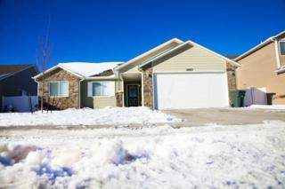 3610  Hoback Ave - , Gillette, WY 82718 (MLS #14-1766) :: The Summer Robertson Team