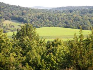 1131  County Route 7  , Ancram, NY 12052 (MLS #201402835) :: Eberle Real Estate Experts