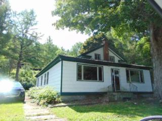 1185  Hauverville Rd  , Middleburgh, NY 12122 (MLS #201422430) :: Eberle Real Estate Experts
