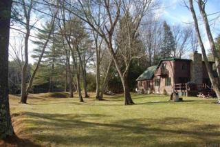 6324  State Route 8  , Brant Lake, NY 12815 (MLS #201424274) :: Eberle Real Estate Experts