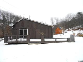 1177  Fox Creek Rd  , Preston Hollow, NY 12469 (MLS #201425182) :: 518Realty.com Inc