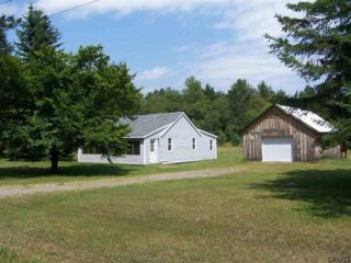 2824  State Route 8  , Ohio, NY 13324 (MLS #201419946) :: Eberle Real Estate Experts