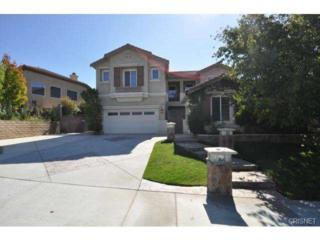 22078  Gold Canyon Drive  , Saugus, CA 91390 (#SR14225306) :: Brian Melville – The Melville Team