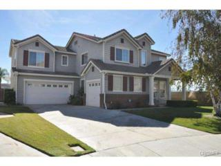 28246  Deer Court  , Canyon Country, CA 91351 (#SR14227337) :: Brian Melville – The Melville Team