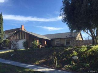 28400  Winterdale Drive  , Canyon Country, CA 91387 (#SR14260682) :: Brian Melville – The Melville Team