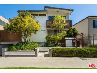 1043  12TH Street  6, Santa Monica, CA 90403 (#15894147) :: The Fineman Suarez Team