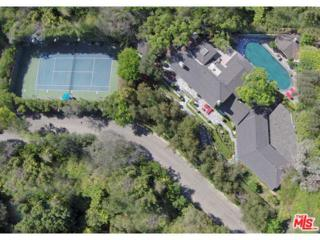 1029  Hanover Drive  , Beverly Hills, CA 90210 (#14786639) :: TruLine Realty