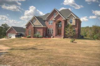 17617 N Lake Norrell  , Alexander, AR 72002 (MLS #10401422) :: Truman Ball & Associates - Realtors® and First National Realty of Arkansas