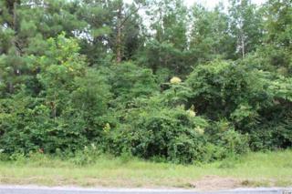 Lot 4B  Hulls Island Road  , Loris, SC 29569 (MLS #1414618) :: SC Beach Real Estate