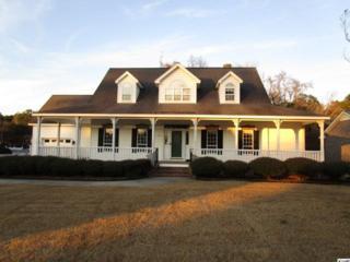 493  Branch Dr.  , Georgetown, SC 29440 (MLS #1422954) :: SC Beach Real Estate