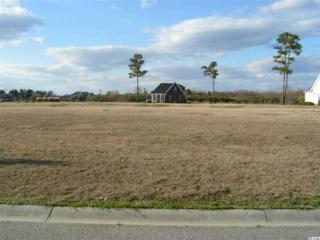 Lot 109  Waterton Ave.  , Myrtle Beach, SC 29579 (MLS #1500018) :: SC Beach Real Estate