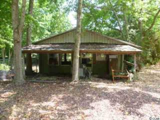 181  Wassamassaw Rd  , Pawleys Island, SC 29585 (MLS #1507300) :: SC Beach Real Estate