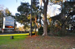 11006  Ocean Hwy  , Pawleys Island, SC 29585 (MLS #1508613) :: James W. Smith Real Estate Co.