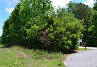 Lot 73  Jason Drive  , Pawleys Island, SC 29585 (MLS #1508941) :: James W. Smith Real Estate Co.