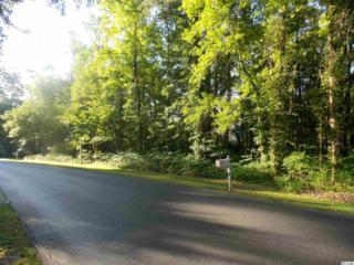 LOT 123  Carriage Run Circle  , Murrells Inlet, SC 29576 (MLS #1510378) :: James W. Smith Real Estate Co.