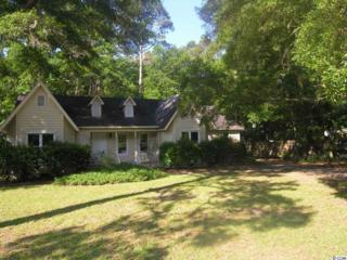 709  Hawthorn Drive  , Pawleys Island, SC 29585 (MLS #1510380) :: James W. Smith Real Estate Co.