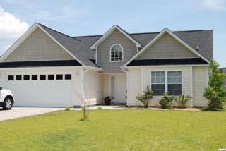 330  Hidden Court  , Myrtle Beach, SC 29588 (MLS #1413751) :: SC Beach Real Estate