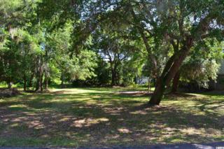 52  Cayman Loop  , Pawleys Island, SC 29585 (MLS #1510090) :: James W. Smith Real Estate Co.