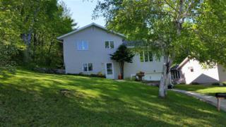 307  Terrace  , Decorah, IA 52101 (MLS #20153535) :: Amy Wienands Real Estate