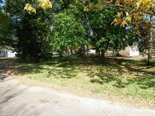 Church St  , Palo, IA 52324 (MLS #1404693) :: The Graf Home Selling Team