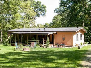 14268  Buffalo Rd  , Anamosa, IA 52205 (MLS #1406434) :: The Graf Home Selling Team