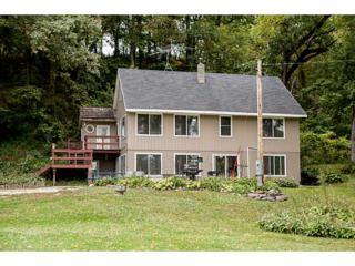 13524  Buffalo Rd  , Anamosa, IA 52205 (MLS #1406566) :: The Graf Home Selling Team
