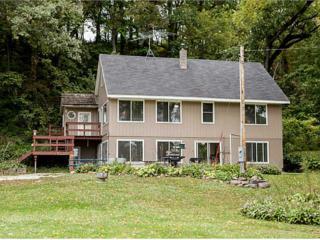 13524  Buffalo Rd  , Anamosa, IA 52205 (MLS #1500720) :: The Graf Home Selling Team