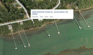 3004  Maritime Forest Drive  , Johns Island, SC 29455 (#14029008) :: The Cassina Group