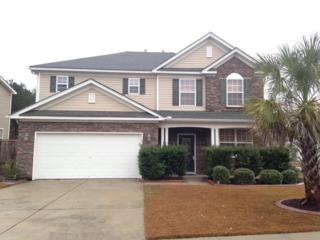 250  Austin Creek Ct  , Summerville, SC 29483 (#14030308) :: The Cassina Group