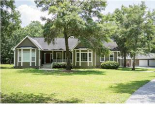 4163  Chisolm Rd  , Johns Island, SC 29455 (#1420387) :: The Cassina Group