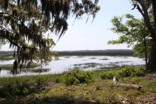78  Long Point Drive  , Beaufort, SC 29907 (#15009890) :: The Cassina Group