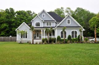 1624  Lonnie Taylor Lane  , Wadmalaw Island, SC 29487 (#15010051) :: The Cassina Group