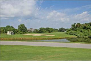 4197  Haulover Dr  , Johns Island, SC 29455 (#1419414) :: The Cassina Group