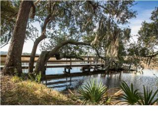 4036  Gift Boulevard  , Johns Island, SC 29455 (#1405682) :: The Cassina Group