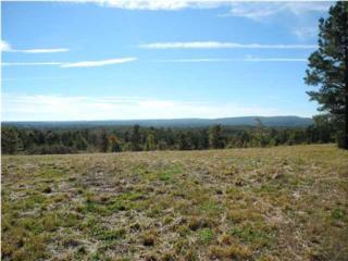 6  Vista Ridge Rd  , Dunlap, TN 37327 (MLS #1218679) :: Keller Williams Realty | Barry and Diane Evans - The Evans Group