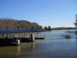 15869  Channel Pt  , Sale Creek, TN 37373 (MLS #1228339) :: Keller Williams Realty | Barry and Diane Evans - The Evans Group