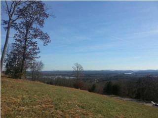0  Summit Dr  , Dayton, TN 37321 (MLS #1220973) :: Keller Williams Realty   Barry and Diane Evans - The Evans Group