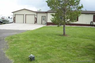 911  Springtime Dr  , Burns, WY 82053 (MLS #58131) :: Coldwell Banker The Property Exchange