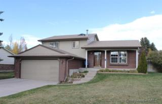 2740  Sagebrush Ave  , Cheyenne, WY 82009 (MLS #59247) :: Coldwell Banker The Property Exchange
