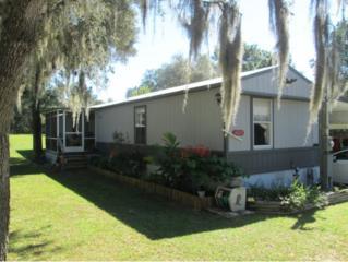 4469 S Halo Hills Ter  , Lecanto, FL 34461 (MLS #706280) :: Plantation Realty Inc.