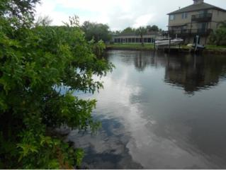11765 W Bayshore  , Crystal River, FL 34429 (MLS #707905) :: Plantation Realty Inc.