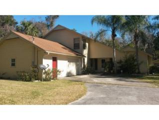 857 N Palm Springs  , Crystal River, FL 34429 (MLS #707918) :: Plantation Realty Inc.