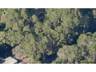 8101 W Homosassa  , Homosassa, FL 34448 (MLS #709596) :: Plantation Realty Inc.