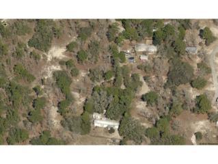 5140 W Oaklawn  , Homosassa, FL 34446 (MLS #710090) :: Plantation Realty Inc.