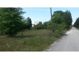 1075 N Suncoast  , Crystal River, FL 34429 (MLS #710119) :: Plantation Realty Inc.