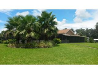 2055 N Watersedge  , Crystal River, FL 34429 (MLS #711327) :: Plantation Realty Inc.