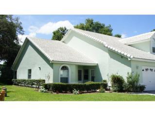 726  Moray Dr  , Inverness, FL 34453 (MLS #711522) :: Plantation Realty Inc.