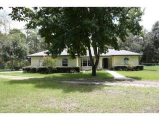 5055 N Andri Dr  , Crystal River, FL 34428 (MLS #712383) :: Plantation Realty Inc.